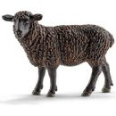 Schleich 13785 - Black Sheep