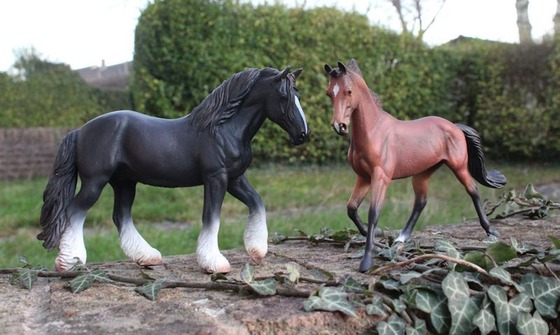 Collecta horses