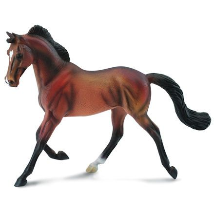 Collecta Thoroughbred