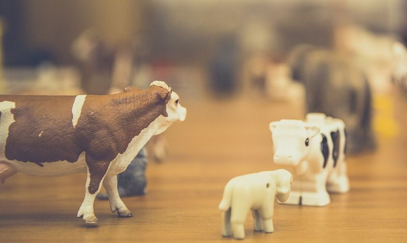 What Scale Are Schleich Animals